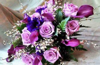 Цветы Инстаграм