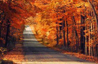 Осенние фото для Инстаграма
