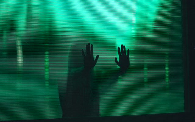 невидимка