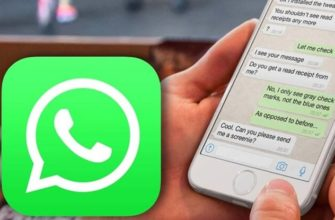 Одна галочка в Whatsapp
