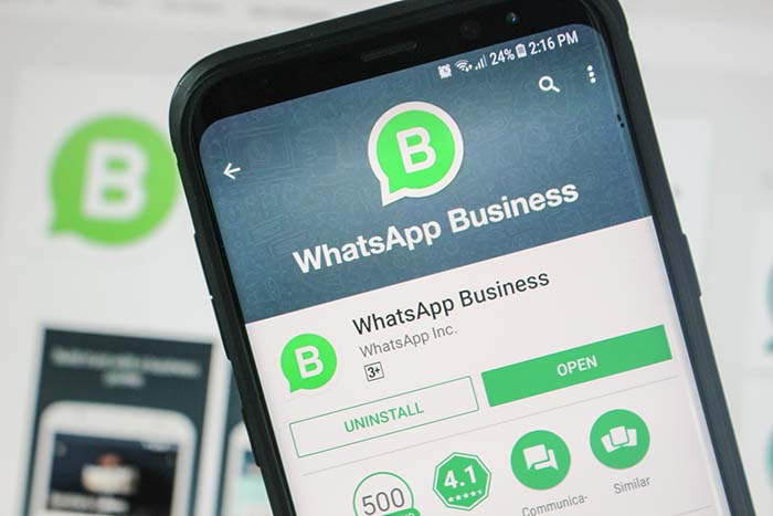 Whats App Business